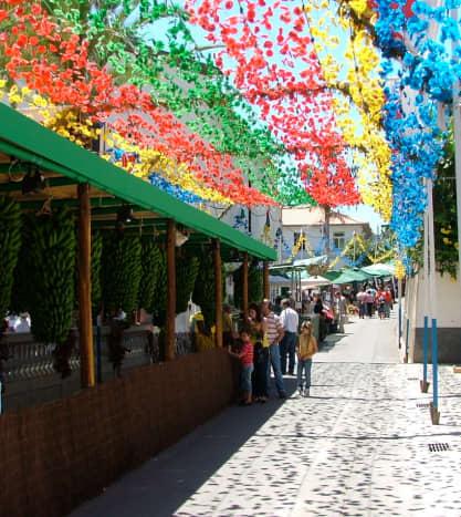 A Festival Flower Canopy