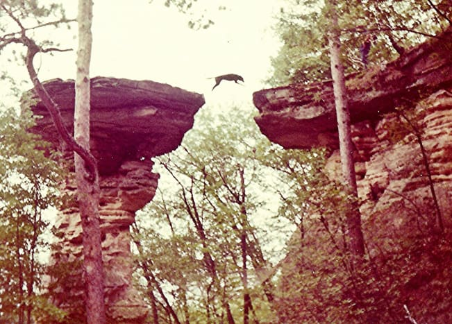 Stand Rock & the dog jumping performance at Wisconsin Dells