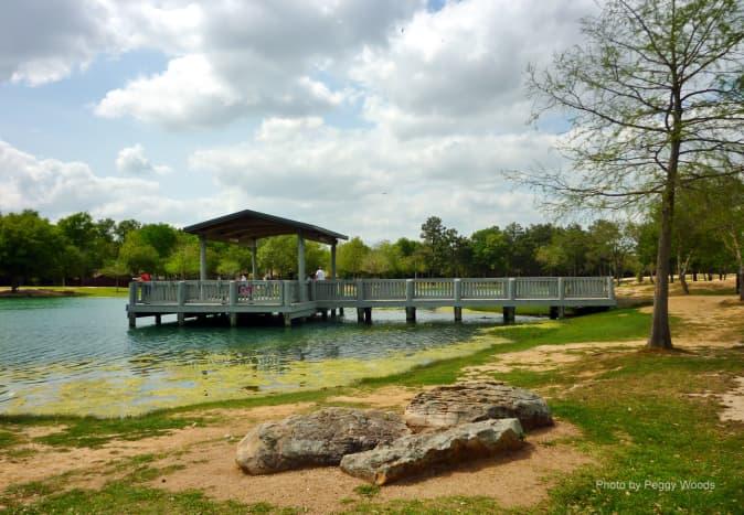 mary-jo-peckham-park-in-katy-texas-bird-sightings-and-more