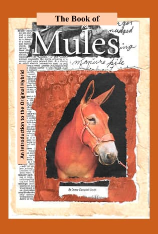 what-is-a-mule