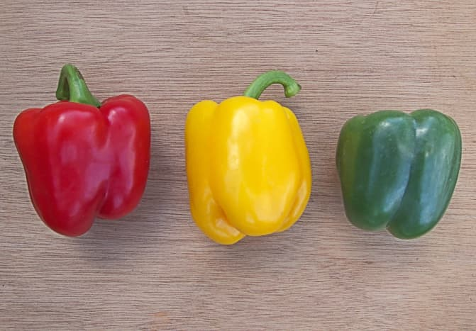 Sweet pepper variety used to make paprika