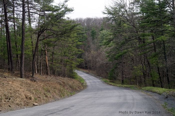 This is an example of paved roads in GRSF.