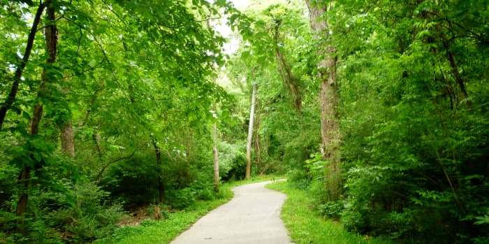 Hike and bike trail on the north side of Cullen Park