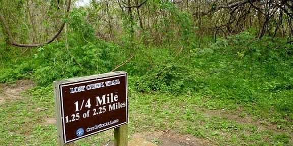 Signs marking off the miles on on this trail through the park.