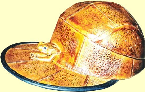 Cane Toad Leather Cap
