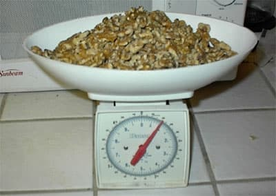First weigh your nuts. Don't forget to put the container on empty first to set scale to zero before putting nuts in container. You want 400 grams of nuts for each pound of wheat. Double if you want a lot extra for more people
