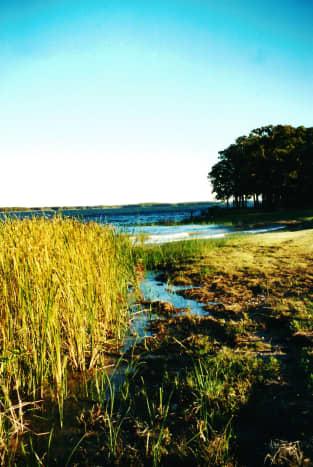150 miles of shoreline