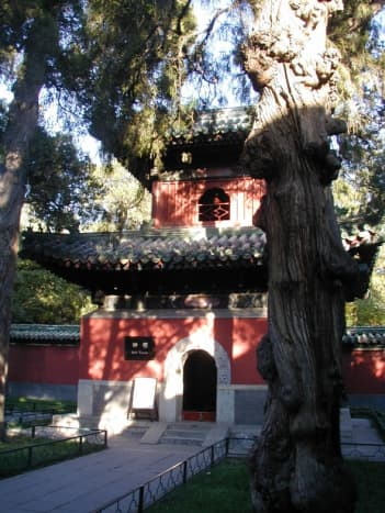 buddhist-temple-tour