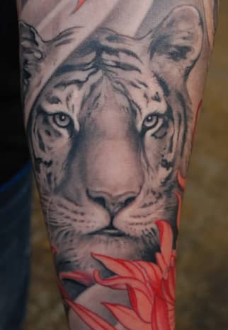 This white tiger tattoo design has a soft approach with the added flower within the tattoo, one way to soften your white tiger tattoo.