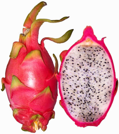 Red skinned, white fleshed dragon fruit