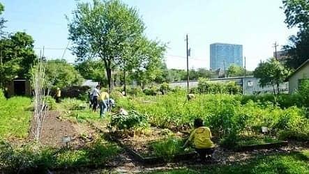 Volunteers are working in this garden.