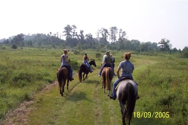 Trail riding at Sane Felasco in Alachua, FL