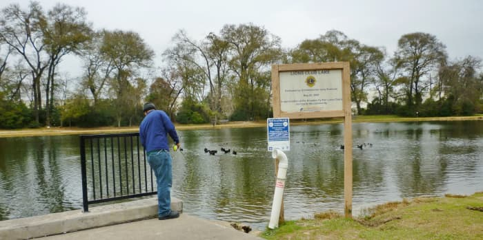 Lions Club Lake with a fisherman