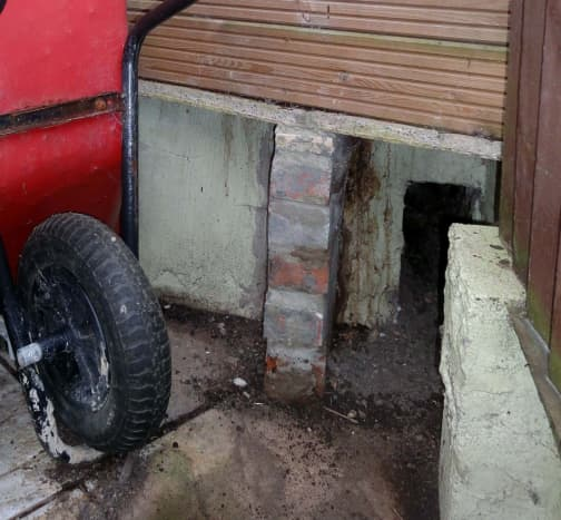 Tunnel for Hedgehog Run