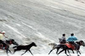 Horse races during Namgan featival