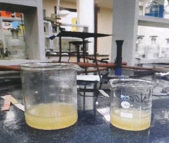 The two layers- biodiesel and oil slowly separate out