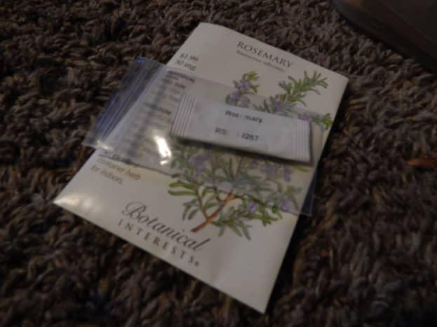 Fresh Rosemary Seed