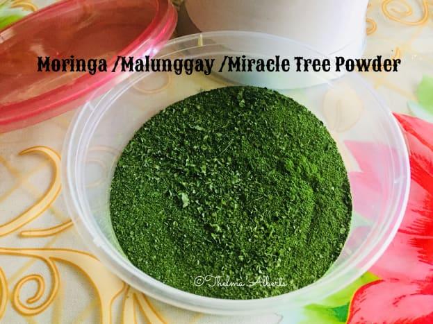 Homemade Moringa tea powder.