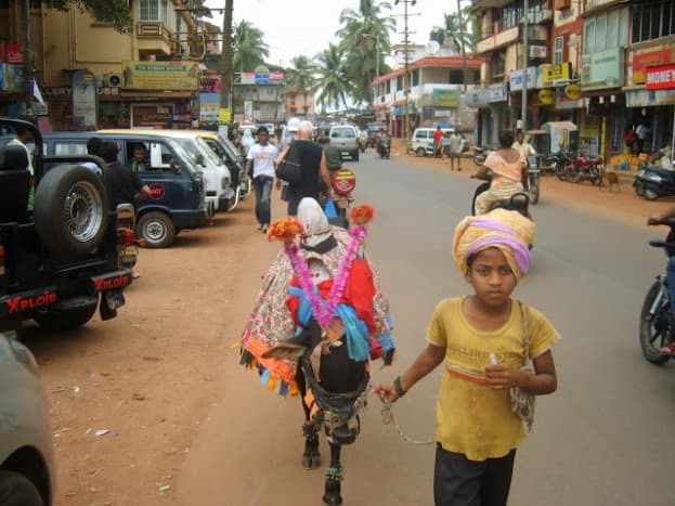 A girl with cattle in Calangute Market, Goa