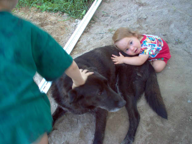 Dakota always love attention from his kids, even visiting nieces!