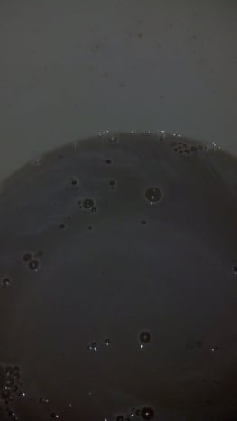 When you see the bubbles, you know the yeast has proofed.