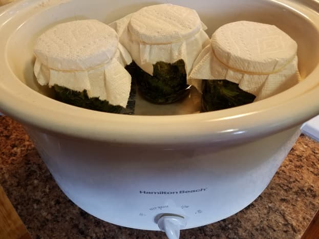Allow the salve to cool and store in a cool, dry place. The oils will preserve the plant matter.