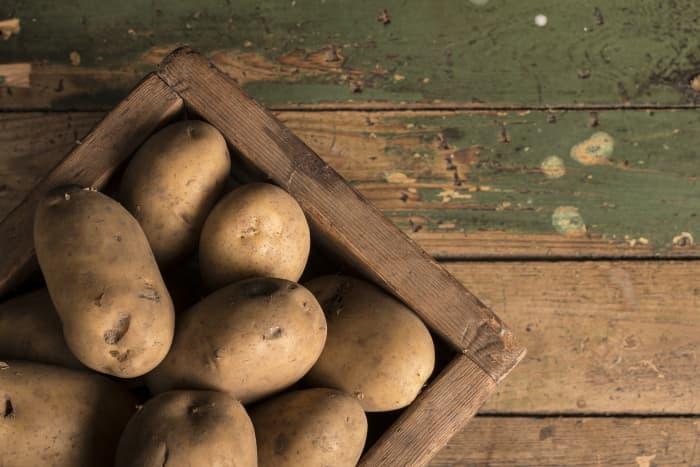 the regal potato