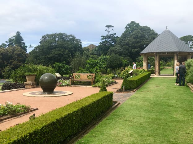 The rose gardens at the Royal Botanic Garden Sydney.