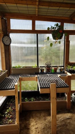 Greenhouse portion of the multi-purpose garden shed.