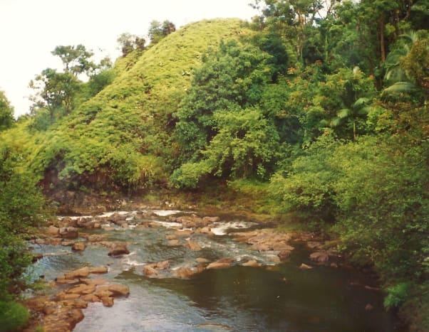 Lush area around Waimea