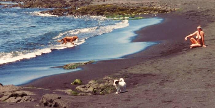 Punaluu black sand beach  in Hawaii