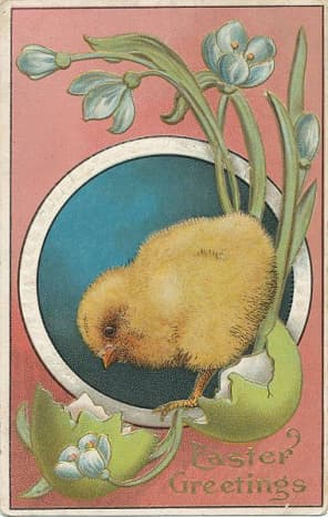 This post card is from about 1910 or so.