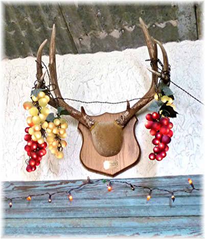Horns over a doorway