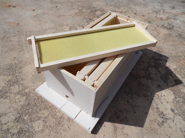Medium frames with ritecell foundation