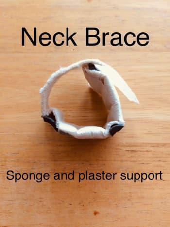 Neck Brace