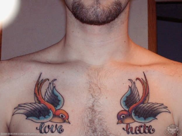 tattoo-ideas-sparrows-and-swallows