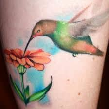 hummingbird-tattoos-history-and-meanings-hummingbird-symbolism
