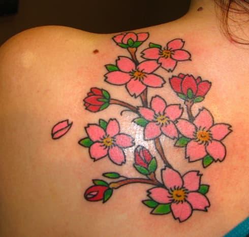 Cherry blossom and rose.