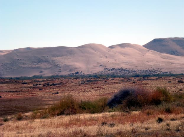 Sand dunes at Bruneau.  Only a portion are shown here.