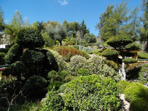 The Japanese garden in Jardin Botanico, Torremolinos.