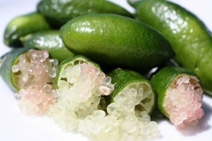 Australian finger lime
