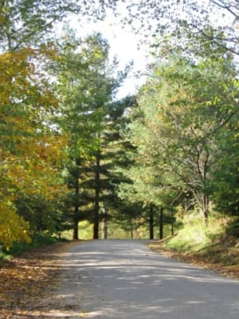 The road leading to a covered bridge.