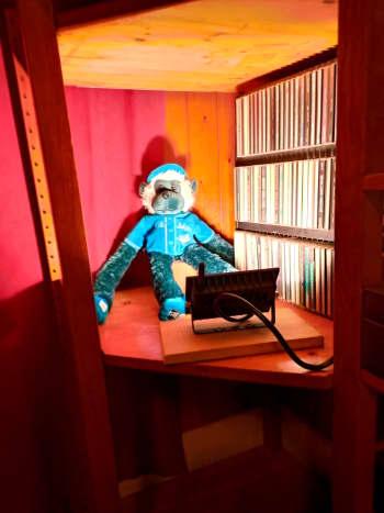Floodlight used to showcase Blue Jay's mascot