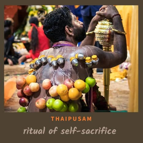 A devotee with small skewers and hanging fruits & mini milk pots for the Thaipusam festival