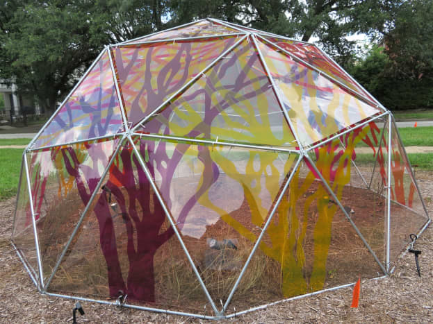 """""""Treeodesic Dome"""" by Cary Reeder"""