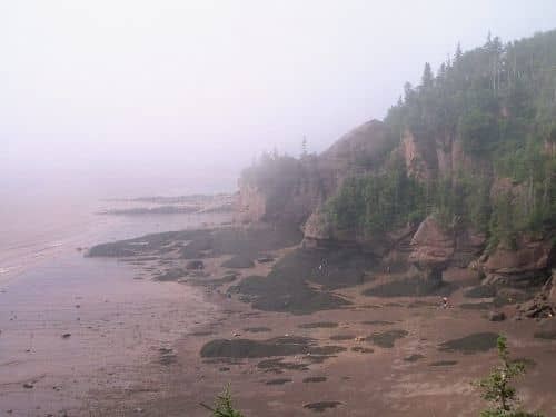 Overview of Hopewell Rocks from above.