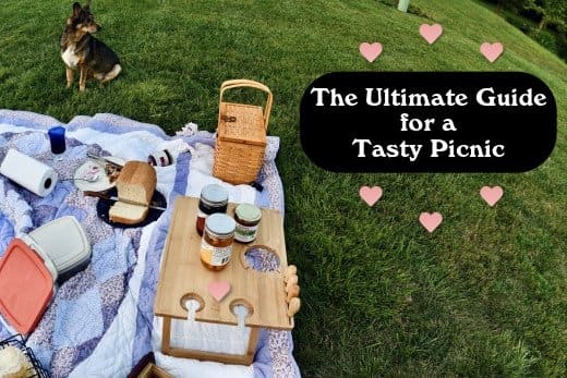 The best picnics include great food, a great view, and great company. This guide will help you figure out the essentials for your picnic.
