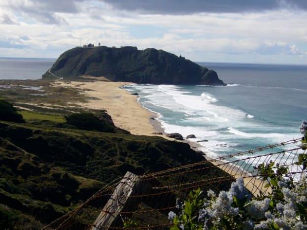 Highway 1 Coast to Big Sur
