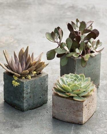 Concrete bricks and tubes make great succulent planters.