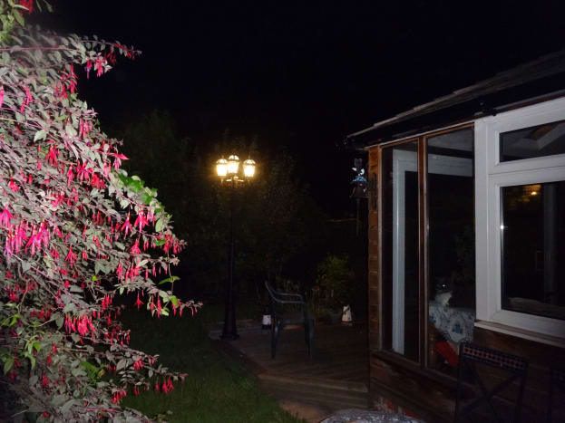 Decking lit up at night by the lamppost.